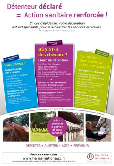 poster_pedagogique_detenteurs_chevaux