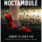 thumbnail of A3-NOCTAMBULE